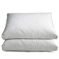 Quilted Goose and Feather Down Standard Pillow in White (Set of 2)