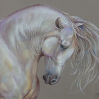 WHITE HORSE, Original pastel painting, Hand drawn, Horse head, Large size, Equestrian Art, Wedding gift,