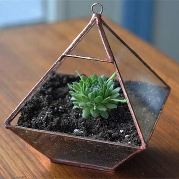 Small Miniature Geometric Glass Planters Decoration for Home&Garden Plants Hanging Glass Pots and Solder Glass Terrarium