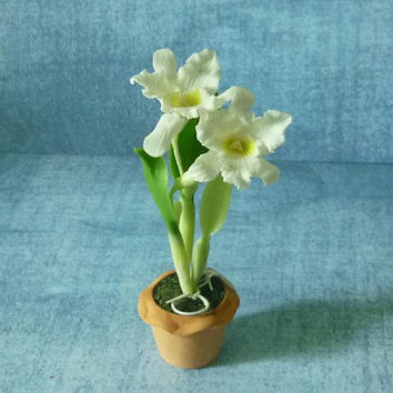 Orchid white catteya pot Miniature flowers Dollhouse miniature, Doll house decorative, miniature plants, Dollhouse decorating