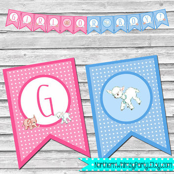 Gender Reveal Party Banner – Girl or Boy? - DIY Printable Banner - Baby Shower Decor –  Pastel Pink and Blue - INSTANT DOWNLOAD