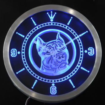 nc0356-b Pit Bull Dog Shop Pet Animals Neon Sign LED Wall Clock