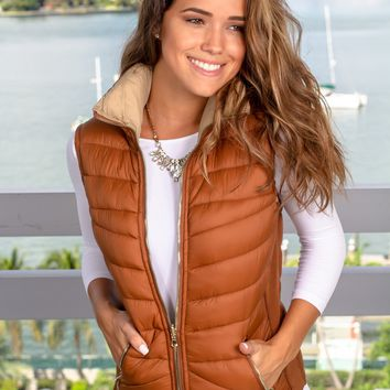 Brown and Beige Reversible Puffer Vest