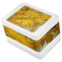 Yellow autumn maple leaves. Add you text or name. Cooler