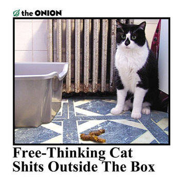 Onion Store > Free Thinking Cat Shits Outside The Box