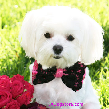 Hot Pink dog Bow Tie with collar, Pet accessory, Dog Birthday