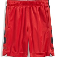 Toddler Boy's Nike 'Elite Stripe' Shorts