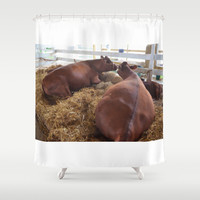 Pair Of Cows 2 Shower Curtain by Lanjee