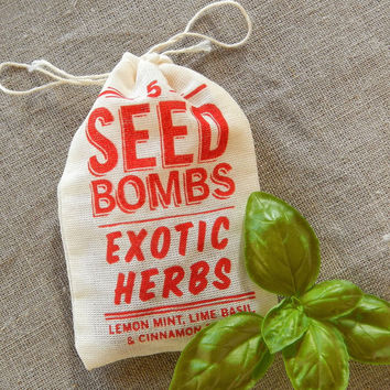 SEED BOMBS by Dept. of Everyday BLOWOUT SALE