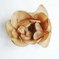 Beige flower brooch