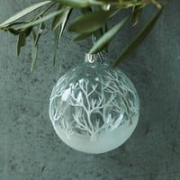 Clear Ball With Fir Branch