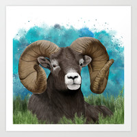 Big Horn Ram  Art Print by North Star Artwork