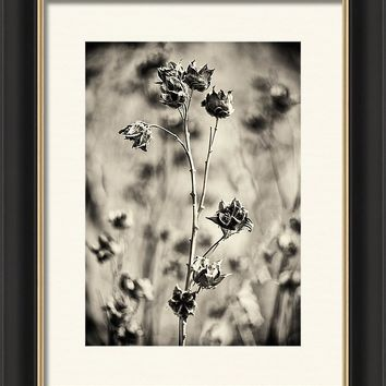 Feeling Of Autumn 4 Framed Print