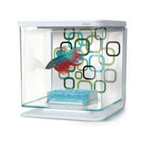 Marina® Geo Bubbles Betta Kit - Fish - Boutique - PetSmart