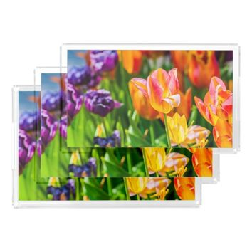 Tulips Enchanting 17 Acrylic Tray