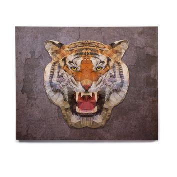 "Ancello ""Abstract Tiger"" Gray Orange Birchwood Wall Art"
