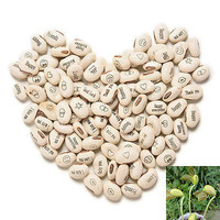 100PCS DIY Magic Bean Seed Plant Love Gift Growing Message Word