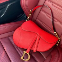 DIOR SADDLE CALFSKIN BAG