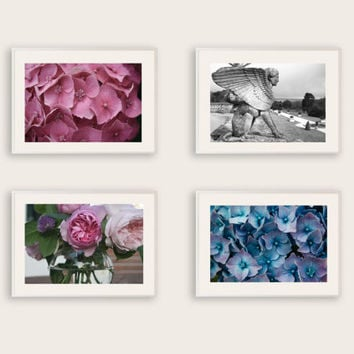 Set of 4 Nature Photographs with a 20% discount, Pink & Blue Hydreangeas, Pink Roses, Black and White Sphinx Statue, Shabby Chic Wall Art.