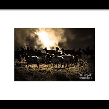 Tomales Bay Harem Under The Midnight Moon - 7d21241 - Sepia Framed Print