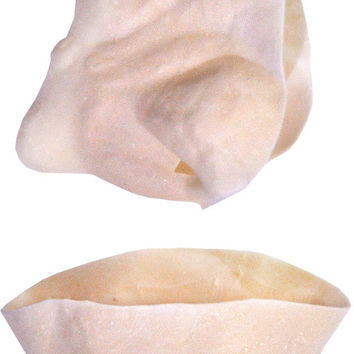 costume accessory: witch kit nose/chin Case of 2