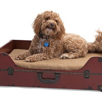 Posh Trunk Pet Bed