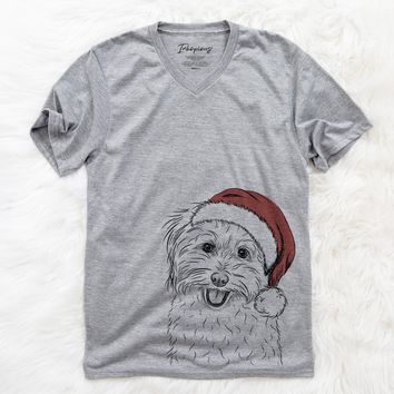 SophieQuinn the Havanese  - Christmas Collection