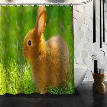 Baby Rabbit Bunny Shower Curtain