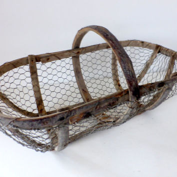 Antique French, Oyster Gathering, Wire Basket, Rustic, Home Decor