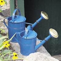 Classic Cans - 1 GALLON BLUE CLASSIC WATERING CAN