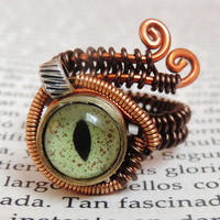 Bullet Casings steampunk wire ring    taxidermy eye by keoops8