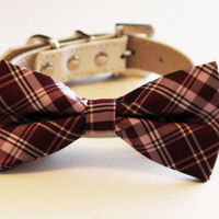 Brownish Dog Bow Tie-Brown- Wedding Dog Collar- with high quality leather collar, Large Dog Collar