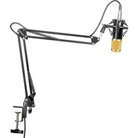 Neewer® NW-800 Professional Studio Broadcasting Recording Condenser Microphone & NW-35 Adjustable Recording Microphone Suspension Scissor Arm Stand