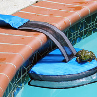 Buy The FrogLog Critter Saving Escape Ramp |Swimming Pool Rescue Device for Small Animals