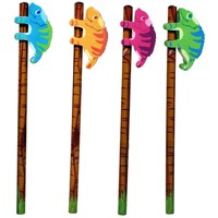 Chameleon Eraser & Pencil - Set of 4