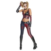 Batman Arkham City Secret Wishes Harley Quinn Adult Costume
