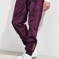 FairPlay Pele Velour Jogger Pant | Urban Outfitters