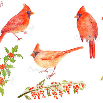 Hand painted watercolour birds - red cardinals and berries in snow instant download scrapbook watercolor christmas greeting cards (set3)
