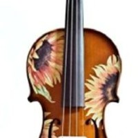 Creative Concept Instruments SSN5012 Rozanna's Sunflower DeLight 1/2 Violin Outfit, Natural
