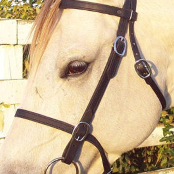 Any Size BLACK English Horse BRIDLE & REINS Trail/Endurance/Show Beta Biothane