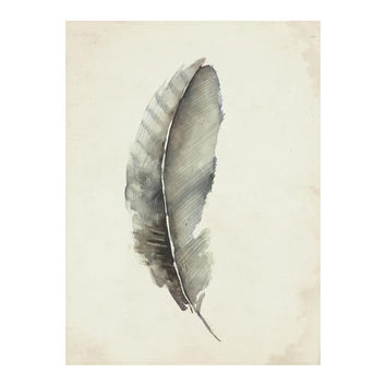 Charcoal Feather 3 Wall Art