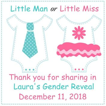 Gender Reveal Onesuit Baby Shower Favor Tags