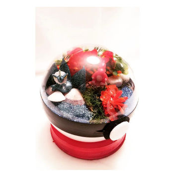 Pokemon Pokeball Large Custom Anime Terrarium