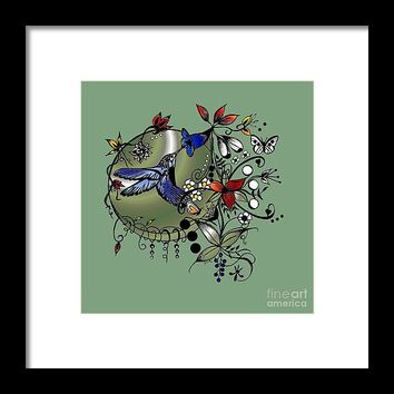 Colorful Hummingbird Ink And Pencil Drawing Framed Print