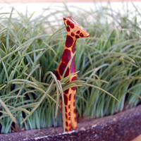Olive Wood Carved Giraffe
