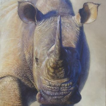 Khaleesi - African White Rhino - 16x20 Oil on canvas