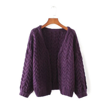 Autumn Women's Fashion Needles Twisted Cardigan Thicken Sweater Jacket [8542262279]