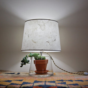 Terrarium/Display Table Lamp with Handmade Paper by SHareStudios