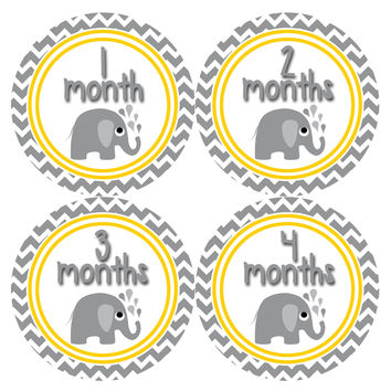 Gender Neutral Baby Stickers Style #382
