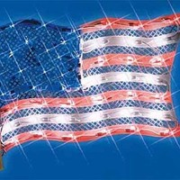 """15"""" Lighted Patriotic Fourth of July American Flag Window Silhouette Decoration:Amazon:Home & Kitchen"""